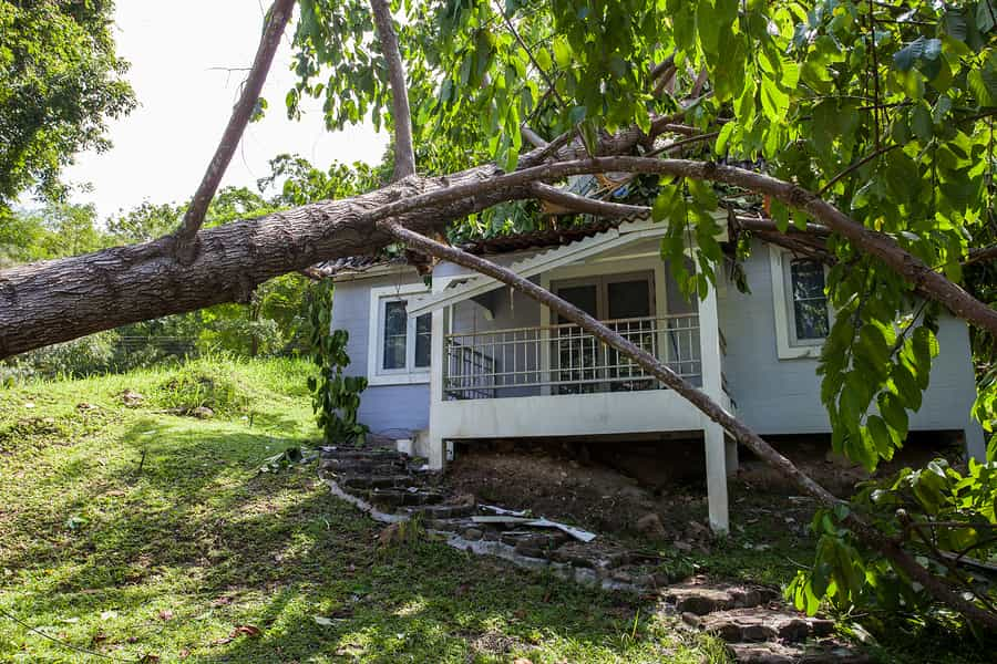 Wind, Hail, and Rain—Oh My! Getting Your Home Back to Pre-Event Condition