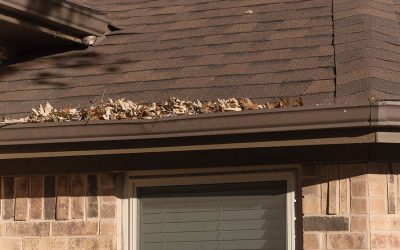 Falling Leaves and Roof Damage