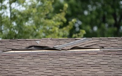 The Ins and Outs of Wind Damage